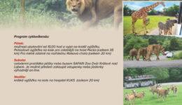 Ddc 20210806 Safari Resize